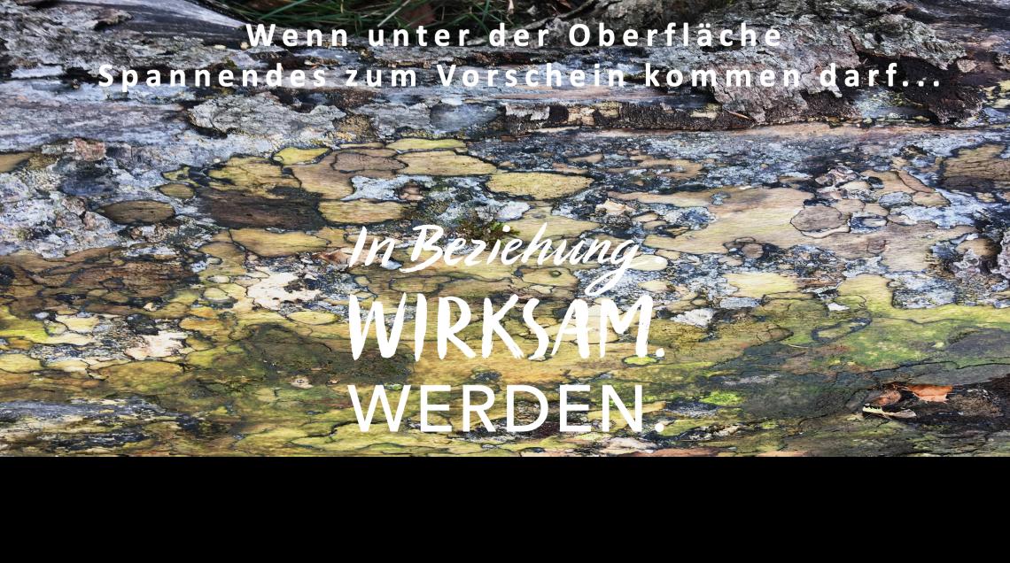 Trigon Coaching Ausbildung Bonn Coachinglehrgang Düsseldorf Zertifikatslehrgang Narbeshuber Vogelauer Glasl SAM Mindfulness München Köln Licht Oberfläche